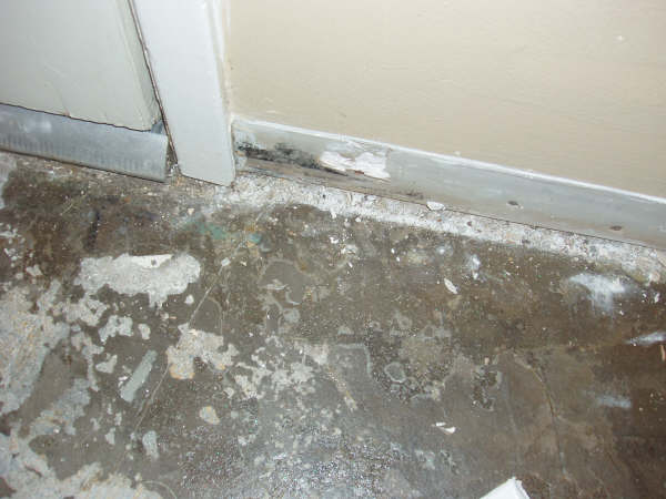 Pictures of mold for Water damage baseboard bathroom